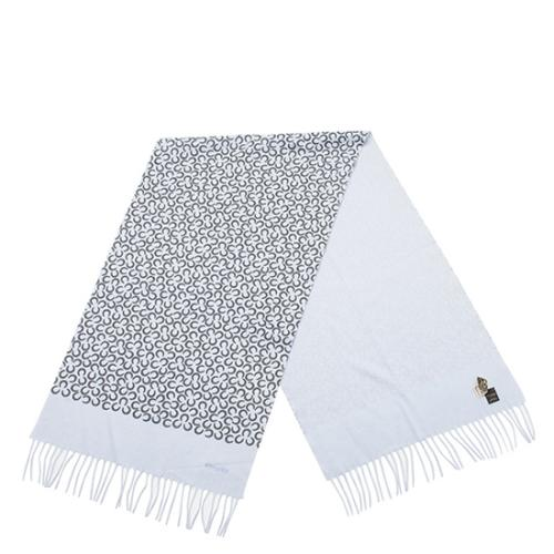 Hermes Printed Cashmere Scarf