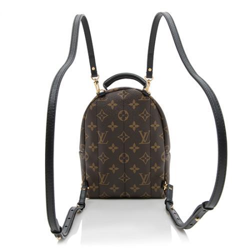 Louis Vuitton Monogram Canvas Palm Springs Mini Backpack