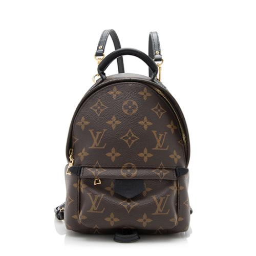 Louis Vuitton Monogram Canvas Palm Springs Mini Backpack